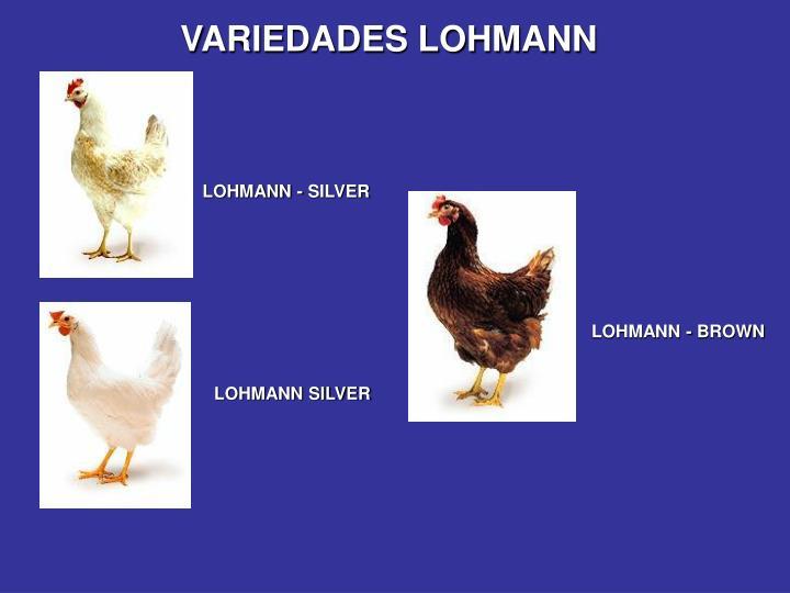 VARIEDADES LOHMANN