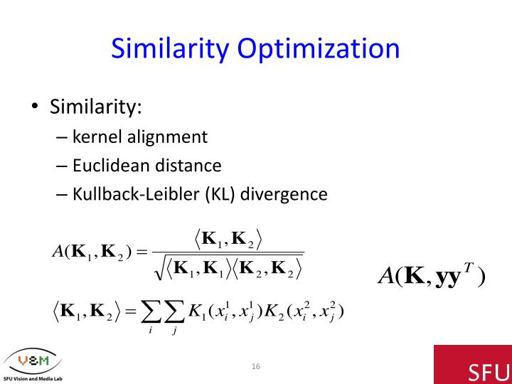 Similarity Optimization