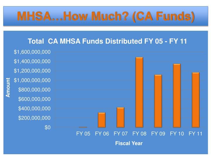 MHSA…How Much