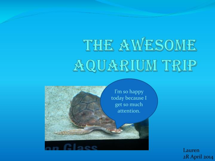 The awesome aquarium trip