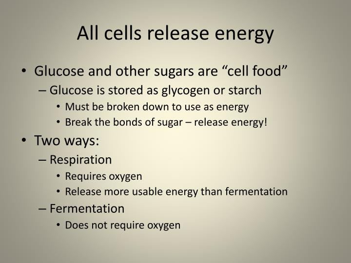 All cells release energy