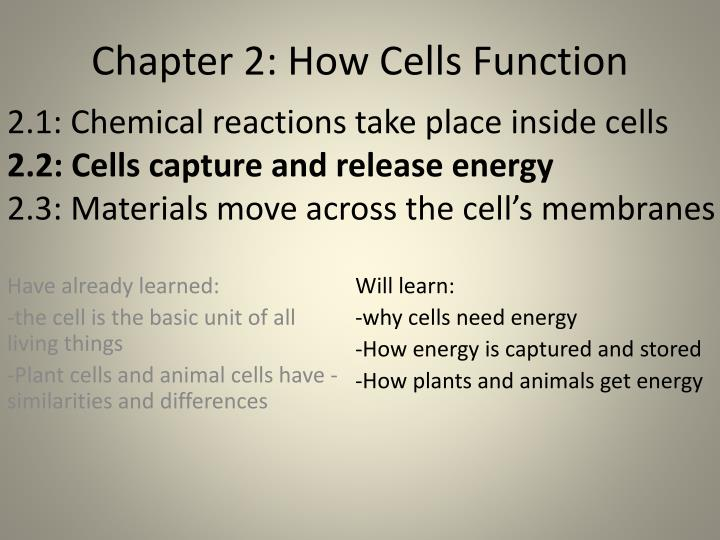 2.1: Chemical reactions take place inside cells