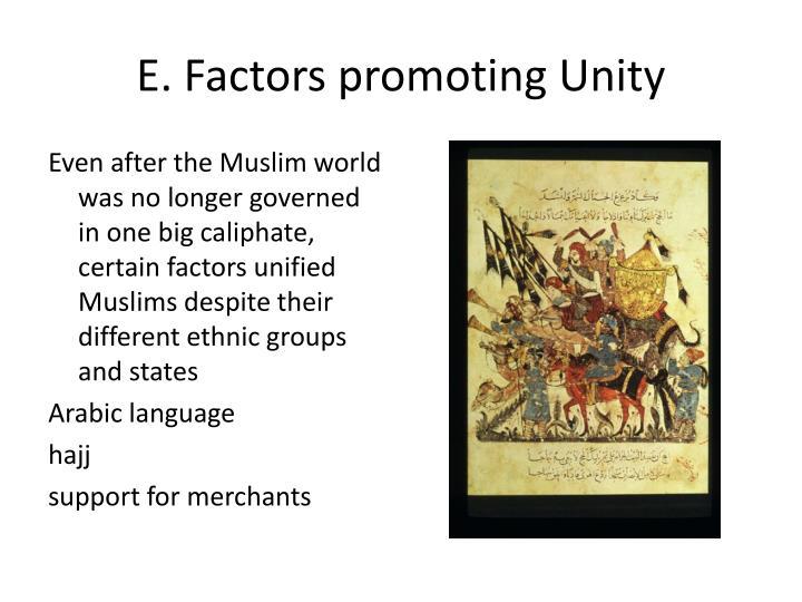 E. Factors promoting Unity