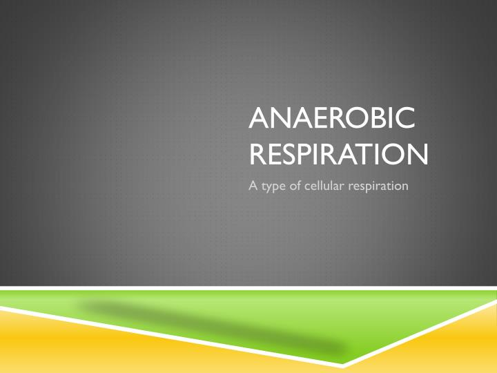 aerobic training vs anaerobic training comparative Aerobic and resistance exercise are part of a balanced fitness routine  world  journal of cardiology: aerobic vs anaerobic exercise training.