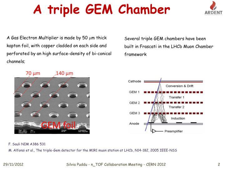 A triple GEM Chamber