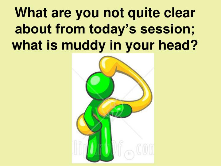 What are you not quite clear about from today's session; what is muddy in your head?