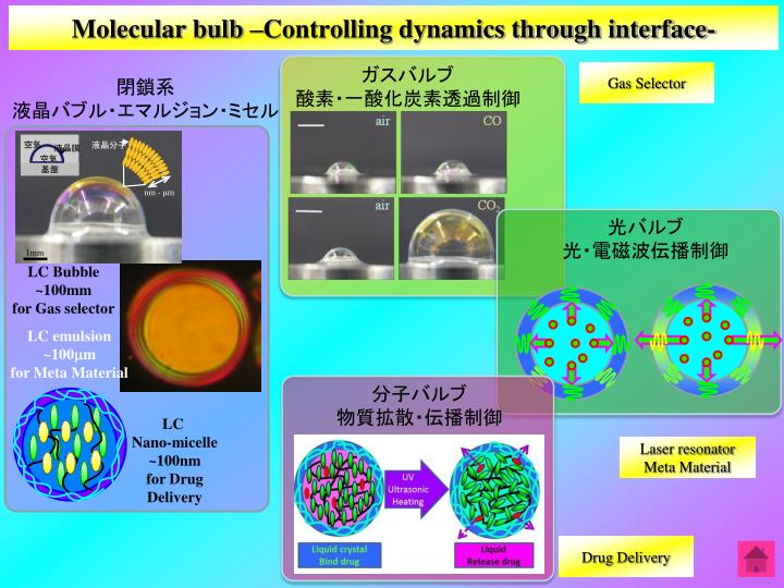 Molecular bulb Controlling dynamics through interface-