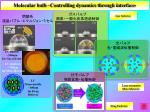 molecular bulb controlling dynamics through interface