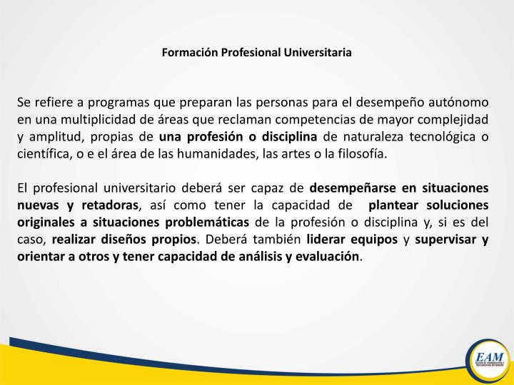 Formación Profesional Universitaria