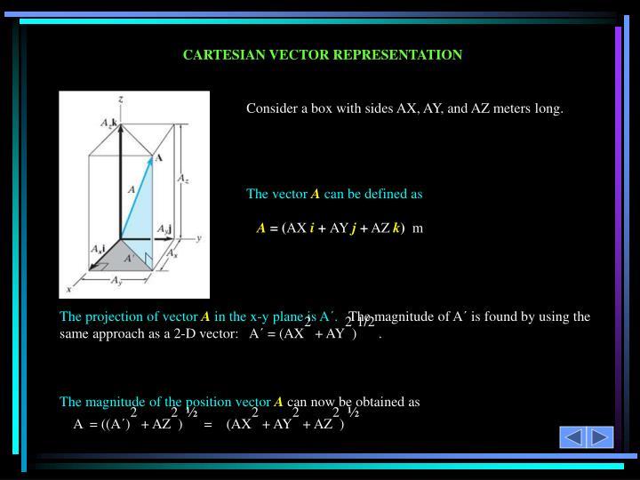 CARTESIAN VECTOR REPRESENTATION
