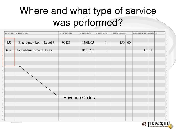 Where and what type of service was performed?