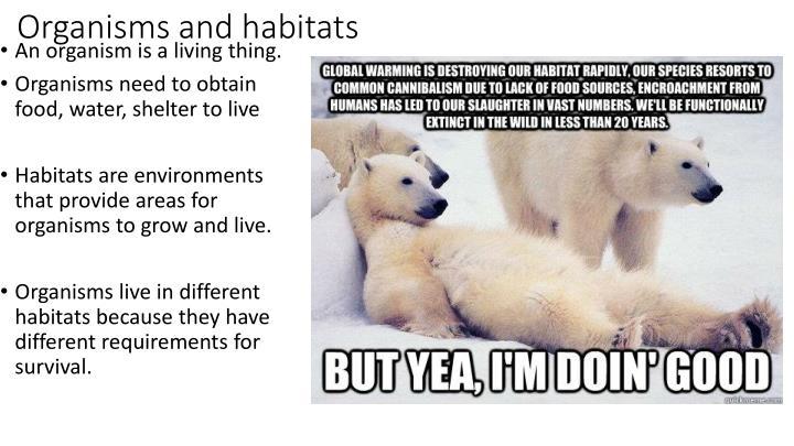 Organisms and habitats