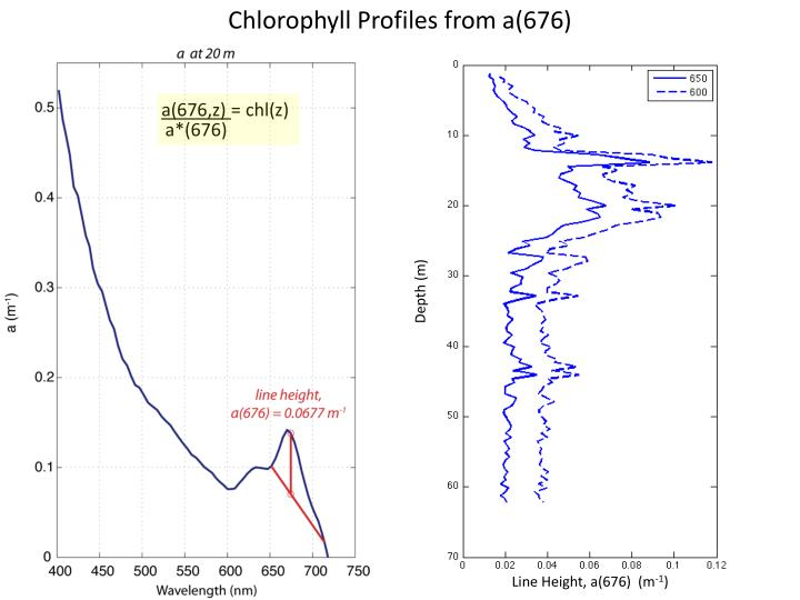 Chlorophyll Profiles from a(676)