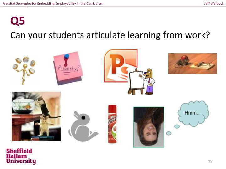 Practical Strategies for Embedding Employability in the Curriculum