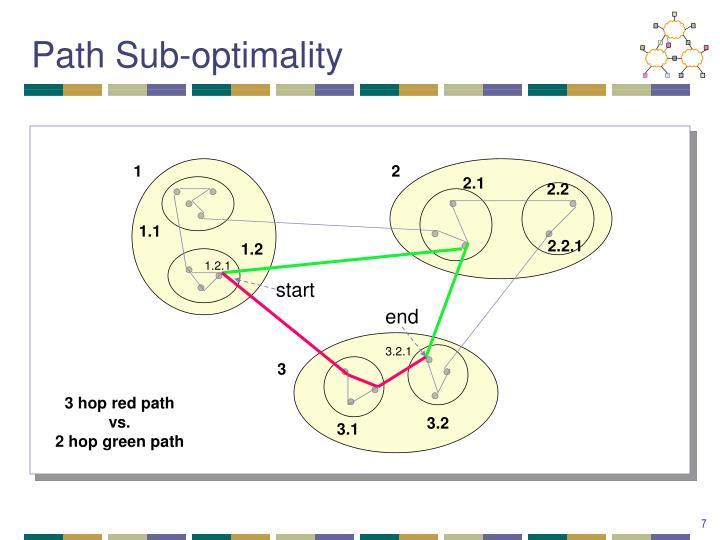 Path Sub-optimality
