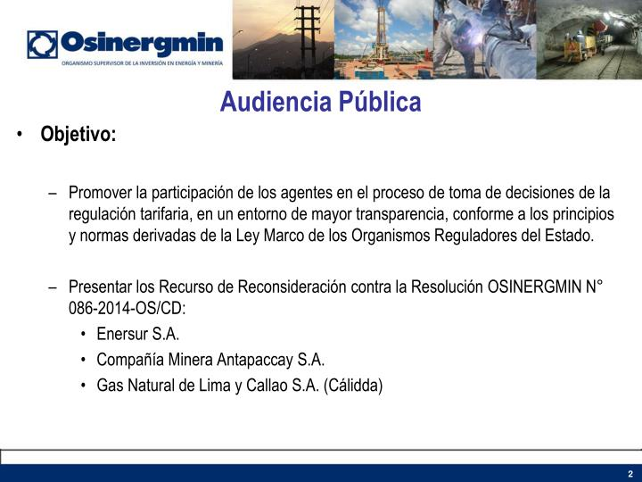 Audiencia p blica