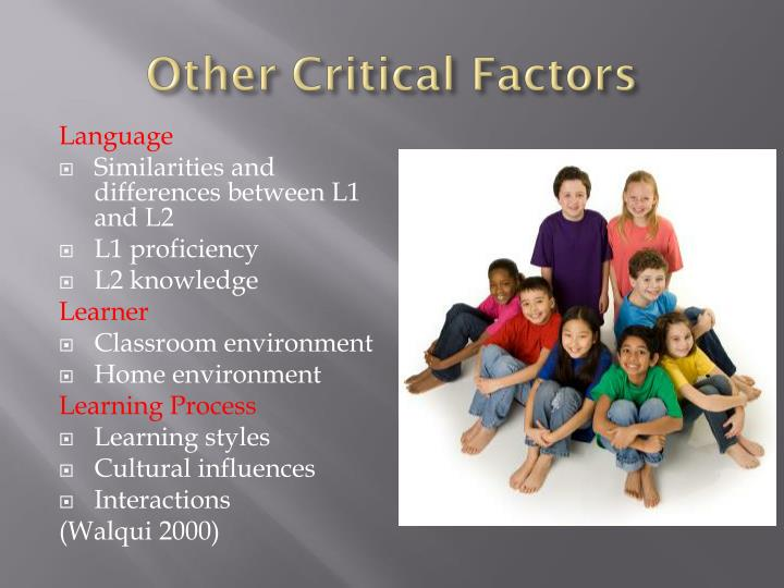 Other Critical Factors
