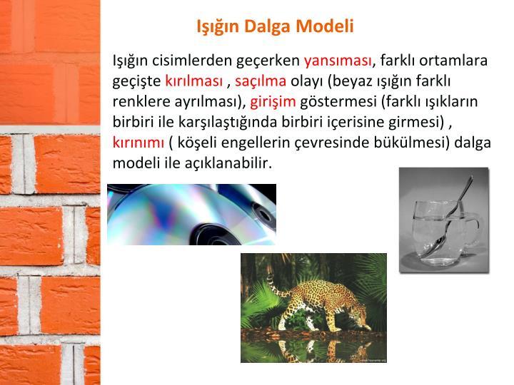 Işığın Dalga Modeli