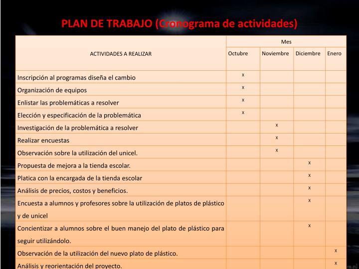 PLAN DE TRABAJO (Cronograma de actividades)