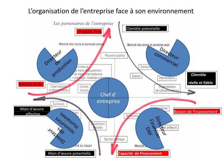 L'organisation de l'entreprise face à son environnement