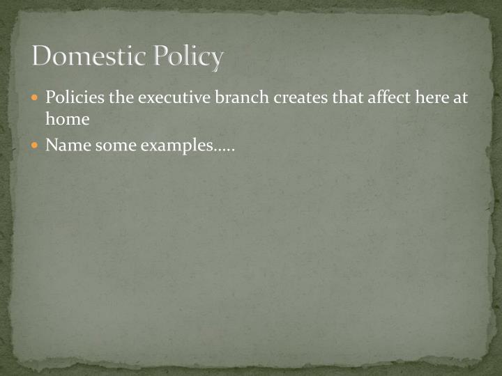 Domestic Policy