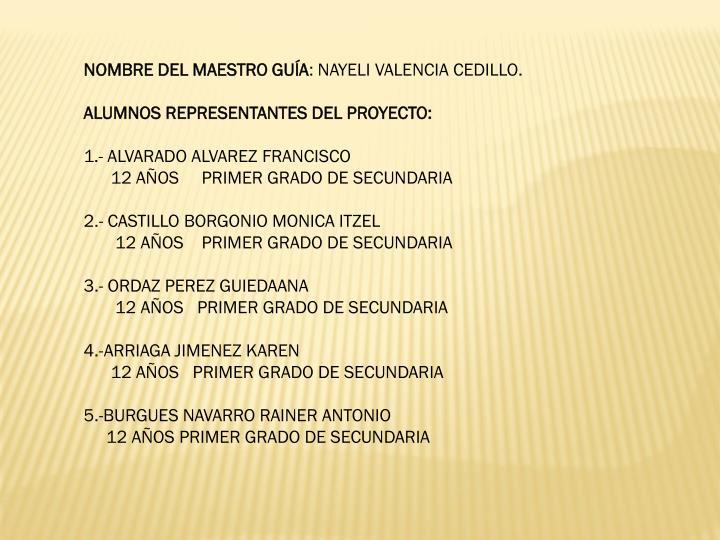 NOMBRE DEL MAESTRO GUÍA