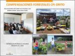 compensaciones forestales cpi orito13