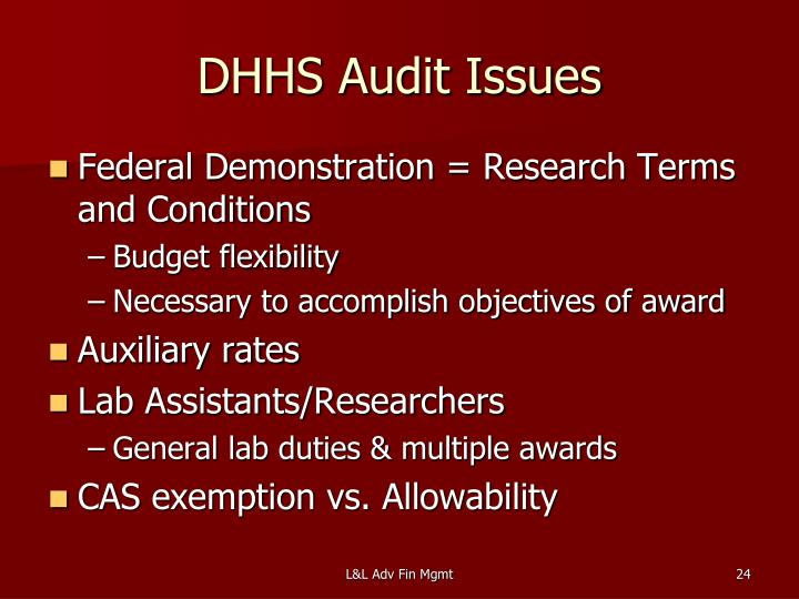 DHHS Audit Issues