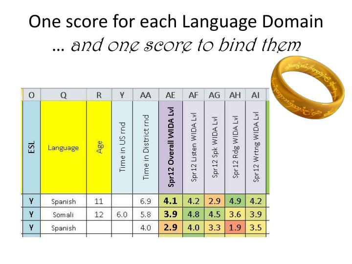 One score for each language domain and one score to bind them