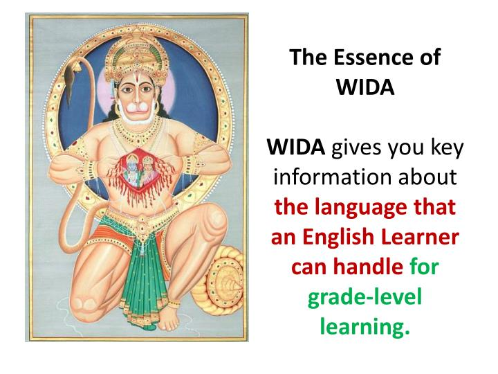 The Essence of WIDA