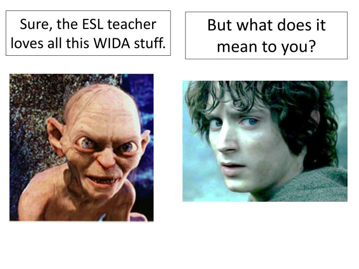 Sure, the ESL teacher loves all this WIDA stuff.