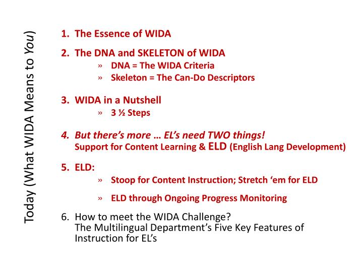 Today (What WIDA Means to