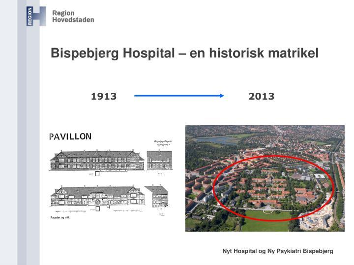 Bispebjerg Hospital – en historisk matrikel