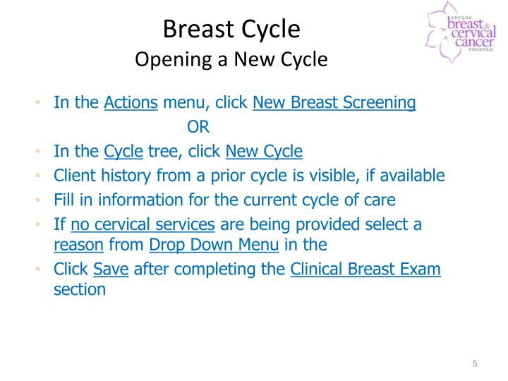 Breast Cycle