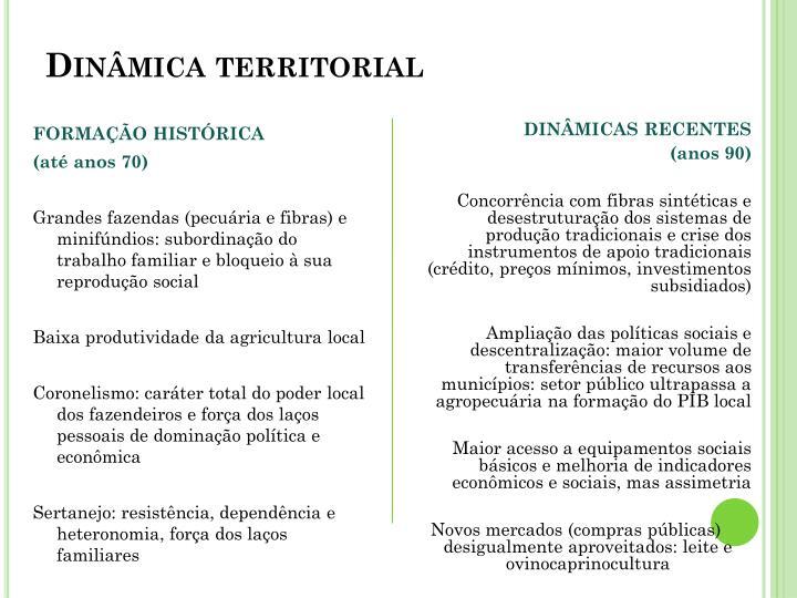 Dinâmica territorial