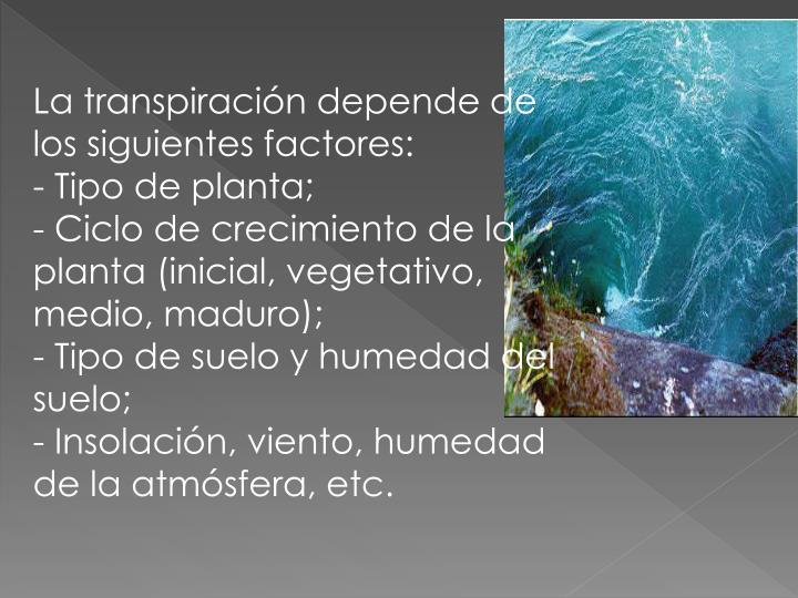 La transpiración depende de los siguientes factores: