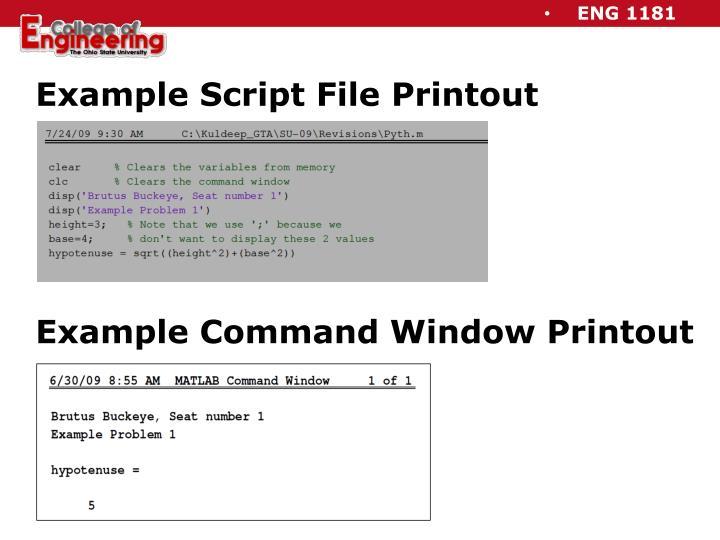 Example Script File Printout