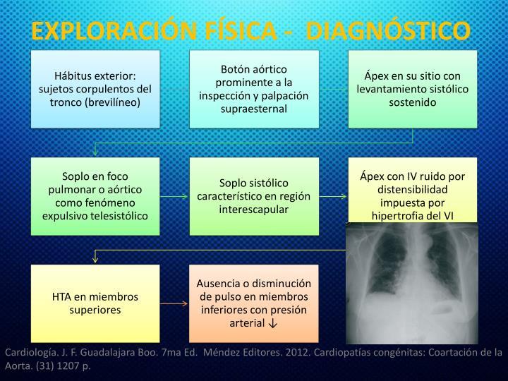EXPLORACIÓN FÍSICA -  DIAGNÓSTICO