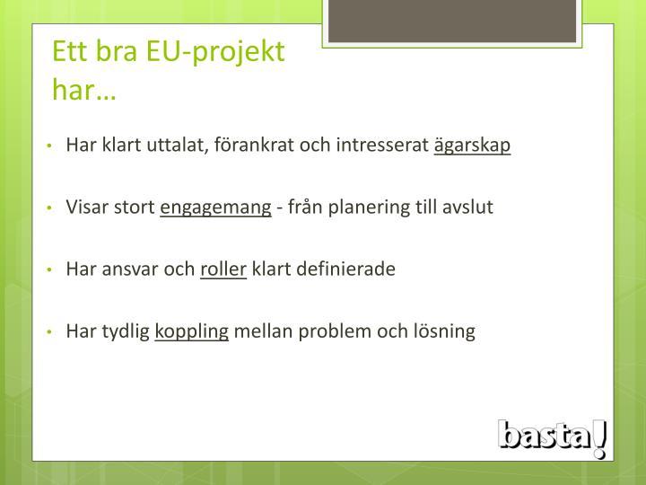 Ett bra EU-projekt har…
