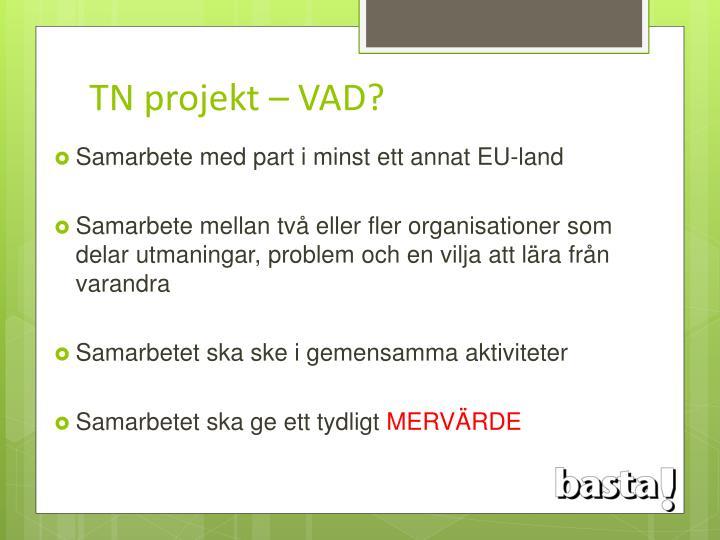 TN projekt – VAD?