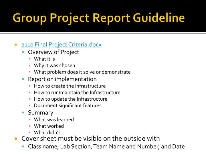 Group Project Report Guideline