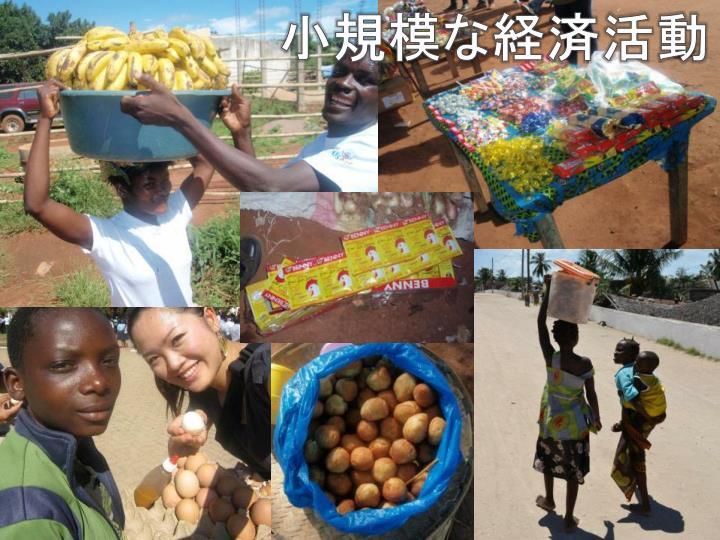 小規模な経済活動