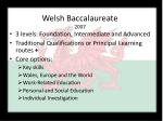 welsh baccalaureate 2007