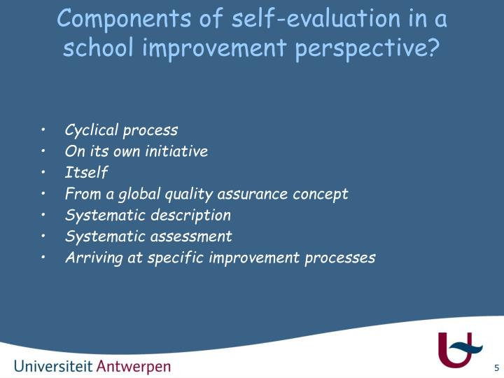 Components of self-evaluation in a school improvement perspective?
