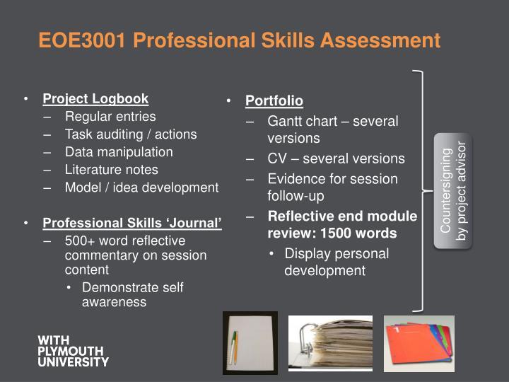 EOE3001 Professional Skills Assessment