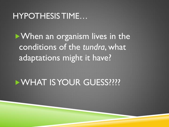Hypothesis time…