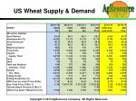 us wheat supply demand