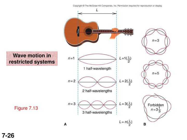 Wave motion in restricted systems