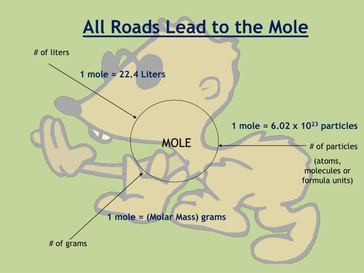 All Roads Lead to the Mole