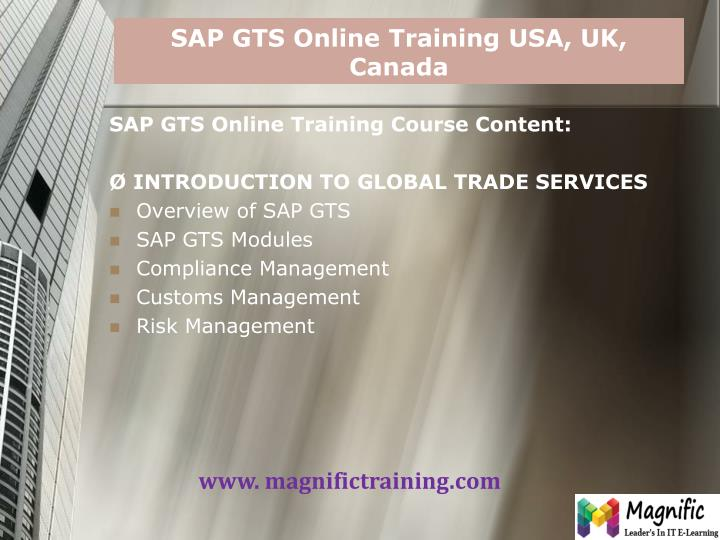 Sap gts online training usa uk canada